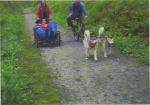 Hal dog sled 3