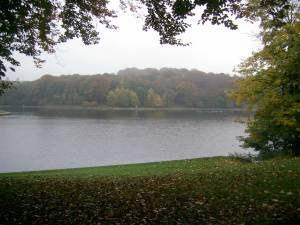 Waterloo Lake, Roundhay Park