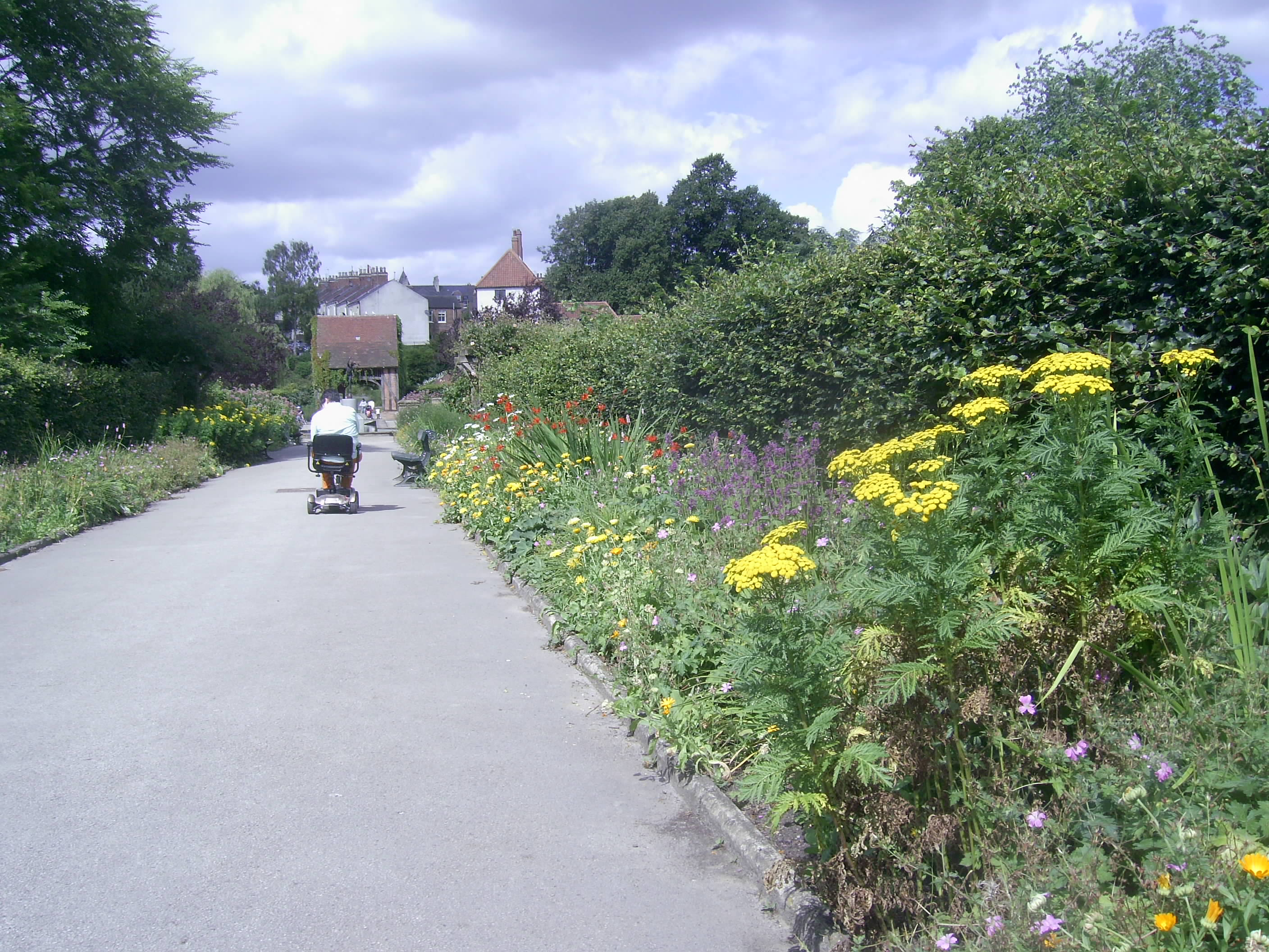 Rowntree Park in Summer