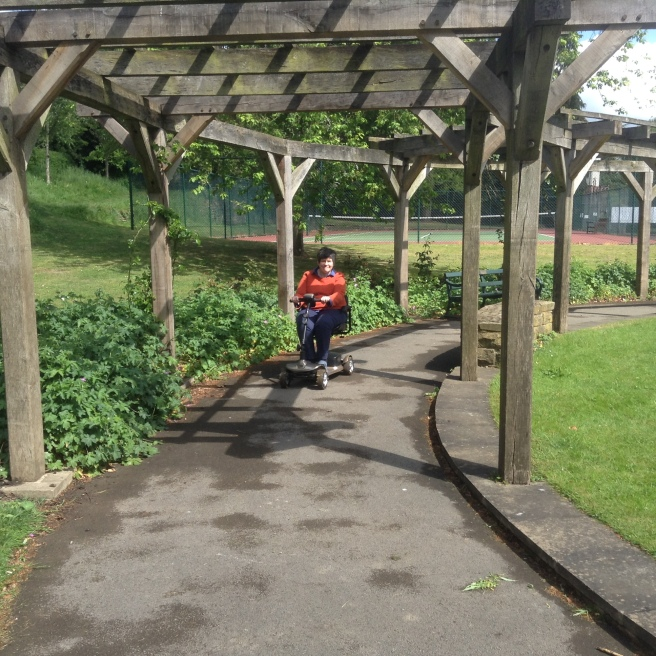 The arbour, Rowntree Park
