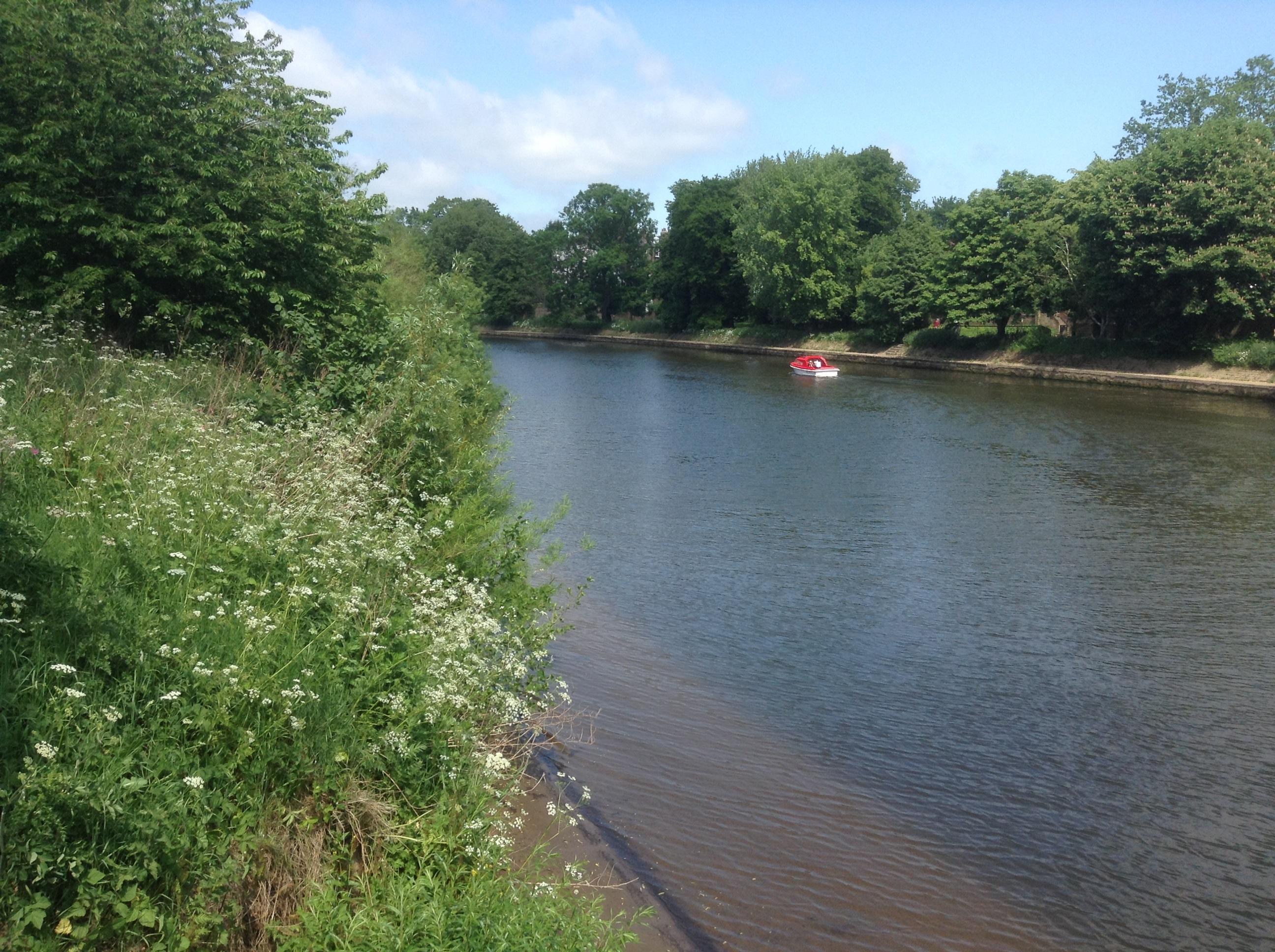 River bank, York