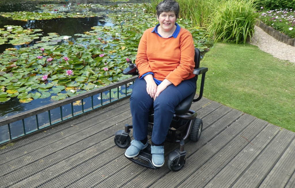 Accessible viewing platform at Burnby Hall Gardens