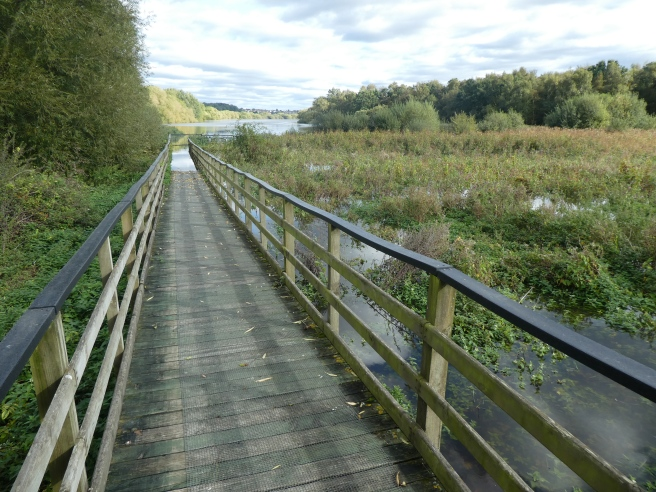 Boardwalk and flooding, Fairburn Ings