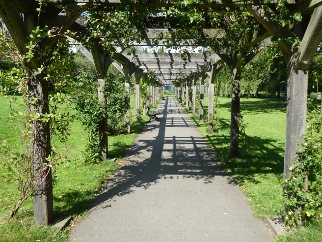 The pergola, Rowntree Park