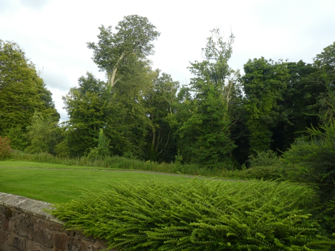 The peaceful surroundings of Doxford Cottages